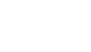 logo_dpi